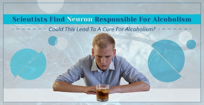 Scientists Find Neuron Responsible for Alcoholism