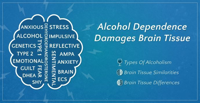Alcohol Dependence Damages Brain Tissue