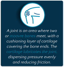 Joint Pain And Muscle Pain From Alcohol Abuse_Joint Defined