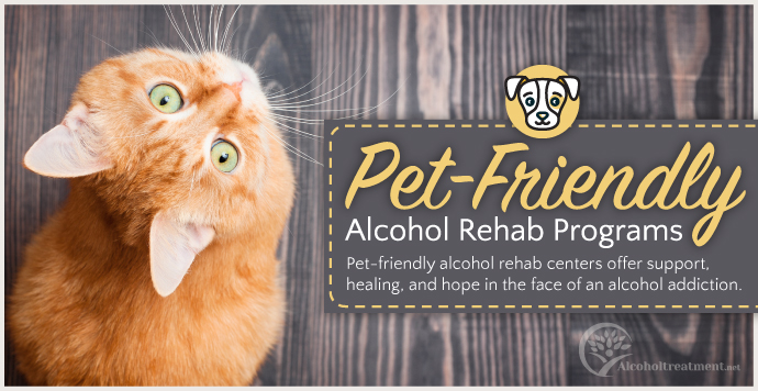 AlcoholTreatment.net Pet-Friendly Alcohol Rehab Programs