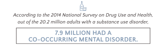 AlcoholTreatment.net Schizoaffective Disorder And Alcohol Addiction 7.9 Million Had A Co-Occurring