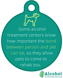 AlcoholTreatment.net What To Look For In An Alcohol Treatment Center Bond Between Person And Pet